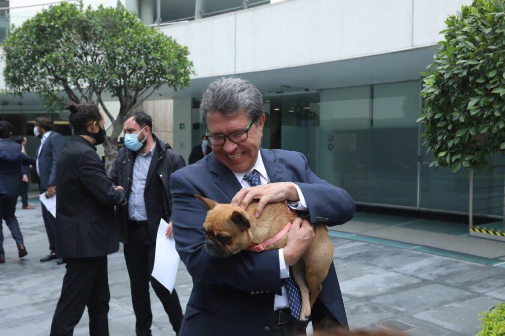 PROPONE RICARDO MONREAL QUE PROTECCIÓN A ANIMALES SEA POLÍTICA DE ESTADO